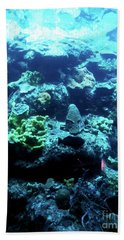Beach Towel featuring the photograph Coral Art 4 by Francesca Mackenney