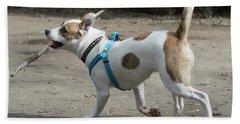 Corby The Dog Beach Sheet
