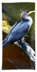 Beach Towel featuring the photograph Cormorant  by Chris Mercer