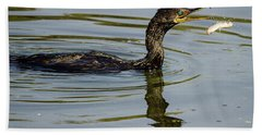 Cormorant Praying Fishing   Beach Towel