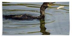 Cormorant Praying Fishing   Beach Sheet