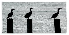 Cormorants Port Jefferson New York Beach Sheet