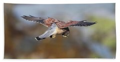 Cornish Kestrel Hunting Beach Sheet