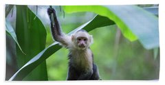 Costa Rica Monkeys 1 Beach Towel
