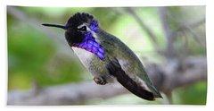 Costa's Hummingbird Beach Towel