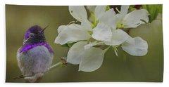 Costas Hummingbird On An Anacacho Orchid Branch Beach Towel