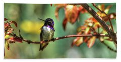 Beach Towel featuring the photograph Costa's Hummingbird by Richard Stephen