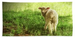 Cotswold Sheep Beach Towel