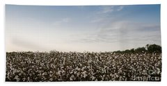 Cotton Field 2 Beach Towel by Andrea Anderegg