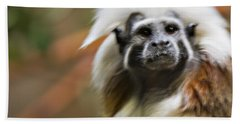 Cotton-top Tamarin _ 1a Beach Towel