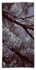 Cottonwood Energies Beach Towel