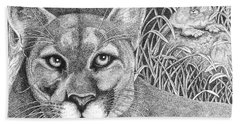 Cougar Beach Towel by Lawrence Tripoli
