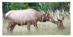 Cow Elk And Spring Baby Beach Towel