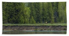 Cow Elk On The Riverbank Beach Towel