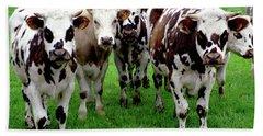 Cow Group Beach Sheet