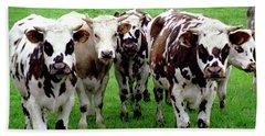 Cow Group Beach Towel