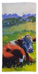 Cow Lying Down On A Sunny Day Beach Towel