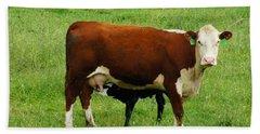 Cow With Calf Beach Towel by Debra Crank