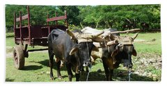 Cows And Cart Beach Towel