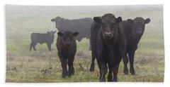 Cows Beach Sheet