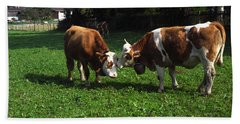 Cows Nuzzling Beach Sheet by Sally Weigand