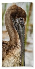 Beach Towel featuring the photograph Coy Pelican by Jean Noren