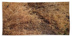 Coyote Brush Beach Sheet
