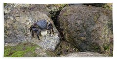 Beach Towel featuring the photograph Crab On Rocks by Suzanne Luft