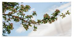 Beach Towel featuring the photograph Crabapple Blossoms  by TL Mair