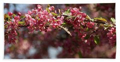 Crabapple In Spring Panoramic Beach Sheet