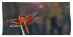 Crackerjack Dragonfly Beach Towel