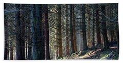 Craig Dunain - Forest In Winter Light Beach Towel