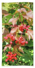 Cranberry Cluster Beach Sheet by Jim Sauchyn