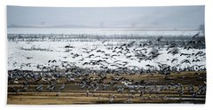 Beach Towel featuring the photograph Crane Dance by Torbjorn Swenelius