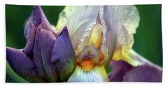 Cream And Purple Bearded Iris With Bud 0065 H_2 Beach Sheet