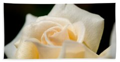 Cream Rose Kisses Beach Towel