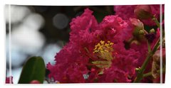 Beach Towel featuring the photograph Crepe Myrtle Flowering Tree by Debby Pueschel