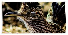 Cresting Roadrunner Beach Sheet