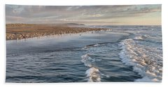 Crests And Birds Beach Sheet by Greg Nyquist