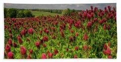 Crimson Clover Patch Beach Sheet by Barbara Bowen