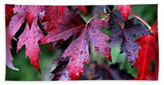 Crimson Leaves Beach Towel