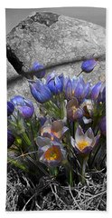 Beach Sheet featuring the digital art Crocus - Between A Rock And You by Stuart Turnbull