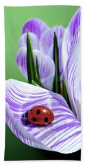 Crocus And Ladybug Beach Sheet