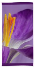 Crocus Stamens  Beach Sheet