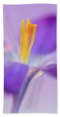 Crocus Stand Proud  Beach Sheet