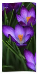Crocus Vividus Beach Towel
