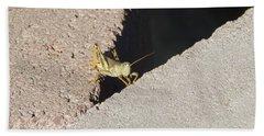 Cross Over Grasshopper Beach Towel