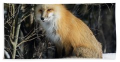 Crossroads With A Red Fox Beach Towel