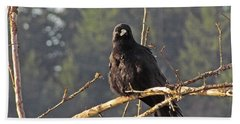 Beach Towel featuring the digital art Crow Morning  by I'ina Van Lawick