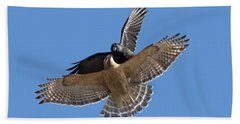 Beach Towel featuring the photograph Crow Vs Hawk by Mircea Costina Photography